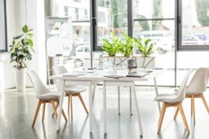 Wohlfühlklima im Büro mit luftreinigenden Pflanzen