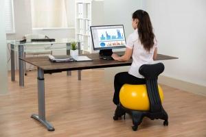 Sitzball mit Rädern und Rückenlehne